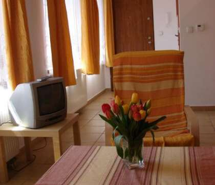 Apartament Vincent